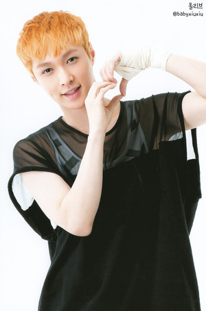Lay (POP UP STORE PHOTOCARDS)