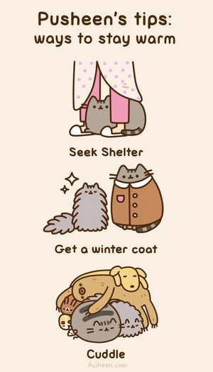 Pusheen's tips: How to stay warm