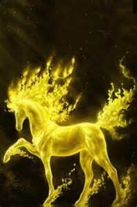 cool golden horse