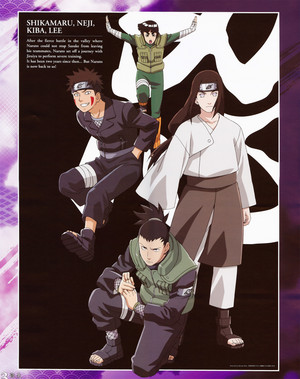 Rock Lee, Shikamaru, Neji and Kiba