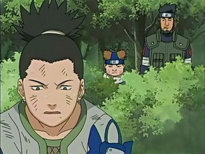 Shikamaru, Choji and Asuma