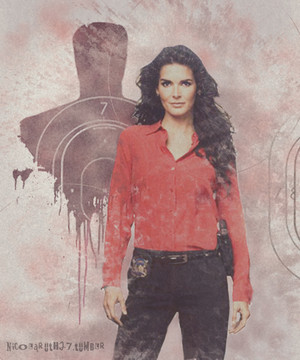 rizzoli and isles fanart