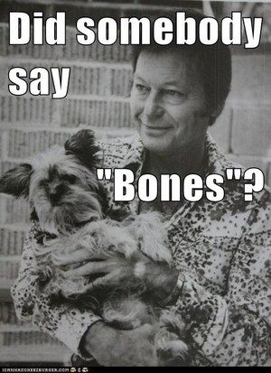 Did somebody say Bones?