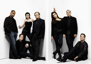 NCIS - Unità anticrimine The Team