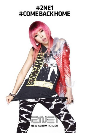 Official photos of 2NE1′s 'CRUSH' Album; rose Edition
