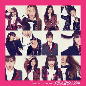 Apink Cover