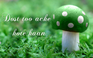 dost to ache hote haan