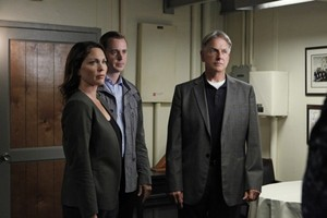 ncis of episode Alleged