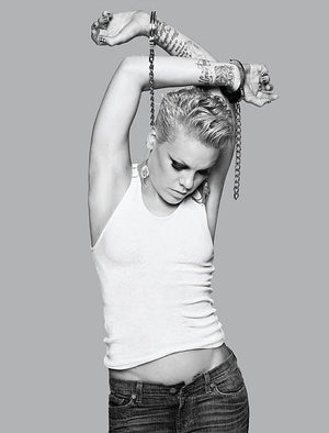 P!nk 사진 Shoots, and Pictures