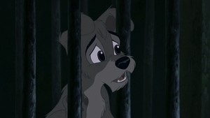 Scamp from Lady and the Tramp 2<3