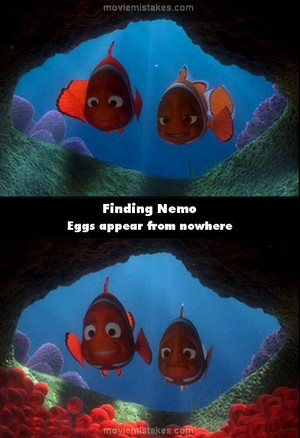 A mistake in finding nemo
