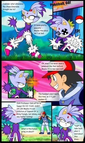 Blaze the Cat in the Pokemon World