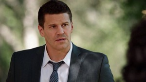 Seeley Booth ☆