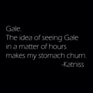 Katniss citations about Gale