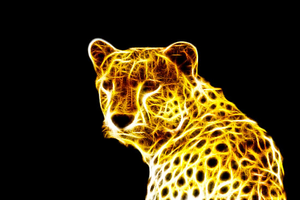 Cool Cheetah 9