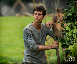 Dylan as Thomas in The Maze Runner