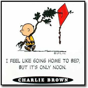 Peanuts Quotes - Charlie Brown