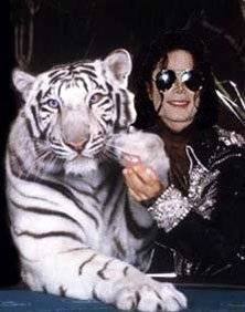 ♥ MJ and a white tiger ♥
