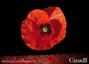 Remembrance Day - Nov 11, 2014