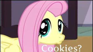 Fluttershy wants biscoitos, cookies