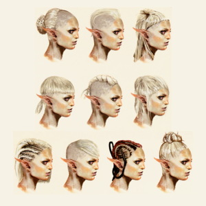 Sera concept art in The Art of Dragon Age: Inquisition