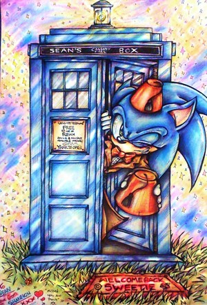 Sonic and Dr Who crossover