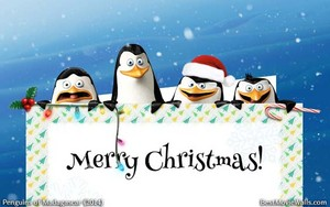 A natal wallpaper with Skipper, Kowalski, Rico and Private