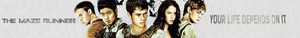 The Maze Runner banner