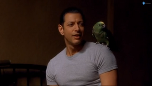 "Jeff Goldblum in "" Auggie Rose"""