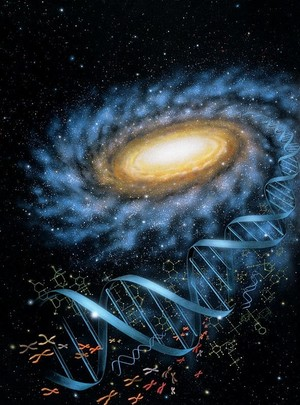 Space DNA