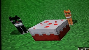stampy & mittens eating cake