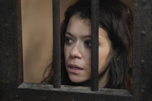 "Orphan Black ""Scarred سے طرف کی Many Past Frustrations"" (3x05) promotional picture"