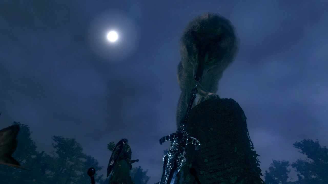 Dark Souls Sif The Great Grey Wolf Dark Souls Video Game