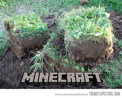 minecraft DIRT REAL LIFE