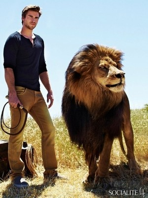 Liam and the lion
