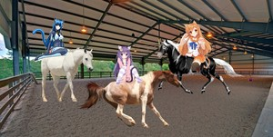 3 cute catgirls riding their beautiful horses