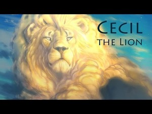 Cecil,the lion...R.I.P