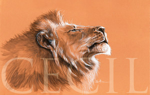 Cecil the lion painting