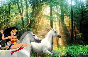 Wonder Woman riding on her white steed to capture and tame a beautiful wild unicorn