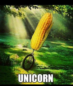 Unicorn lol