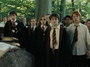 Harry Potter POA