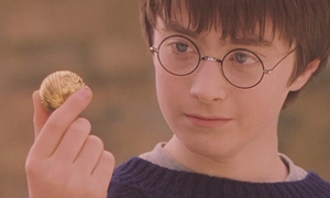 Harry and the Golden Snitch