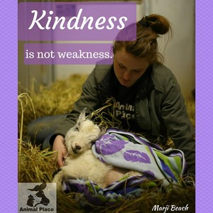 Kindness is not Weakness