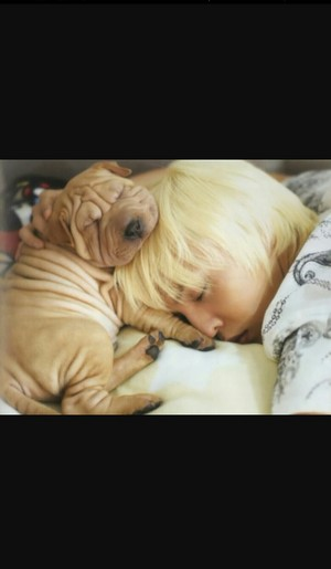 sweet dream GD oppa