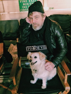 Mark Hamill Selfie from 'Star Wars 8' Set