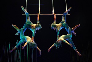 Four person trapeze act