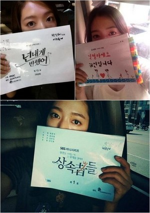 Park Shin Hye with 3 Major Scripts