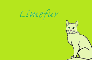 Limefur the Blazeclan cat