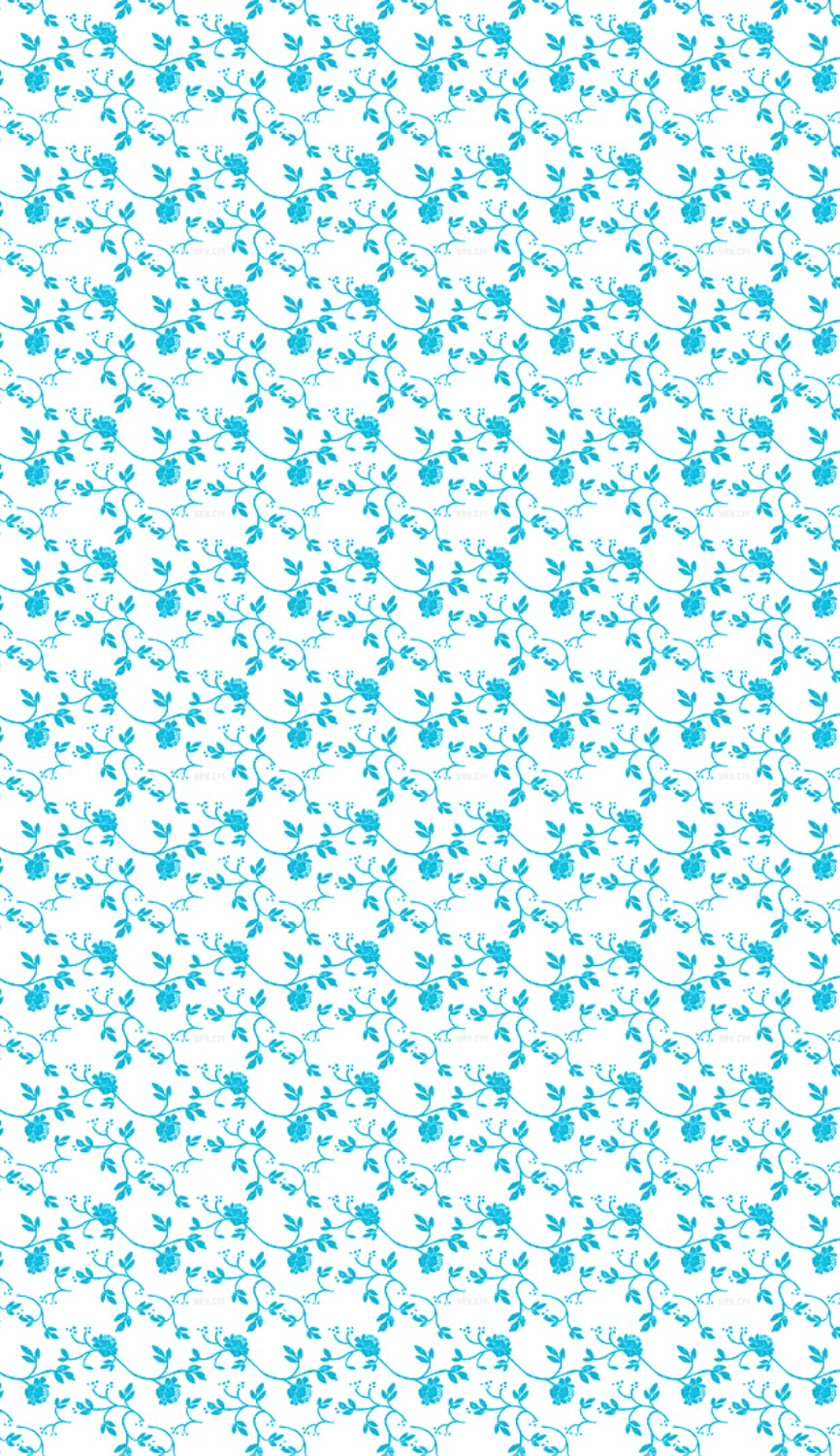 Blue And White Floral Wallpaper Patterns Backgrounds Wallpaper
