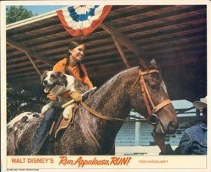 Run, Appaloosa, Run (1966) Lobby Card